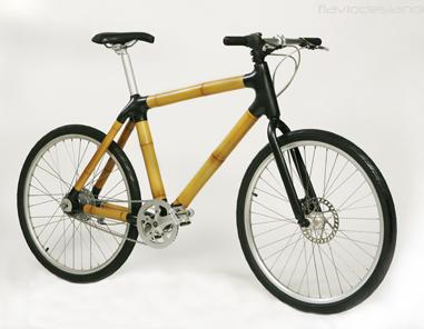 Flaviodeslandes_cykel_381