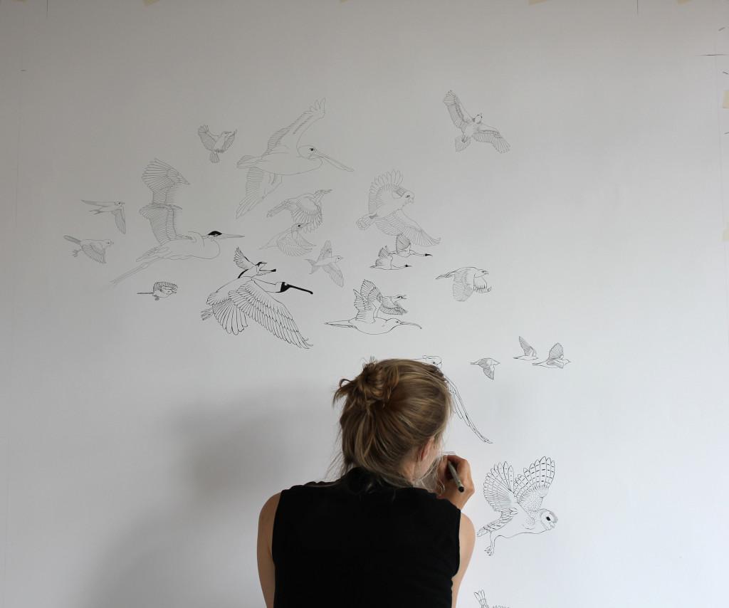002_Tegning af fugle