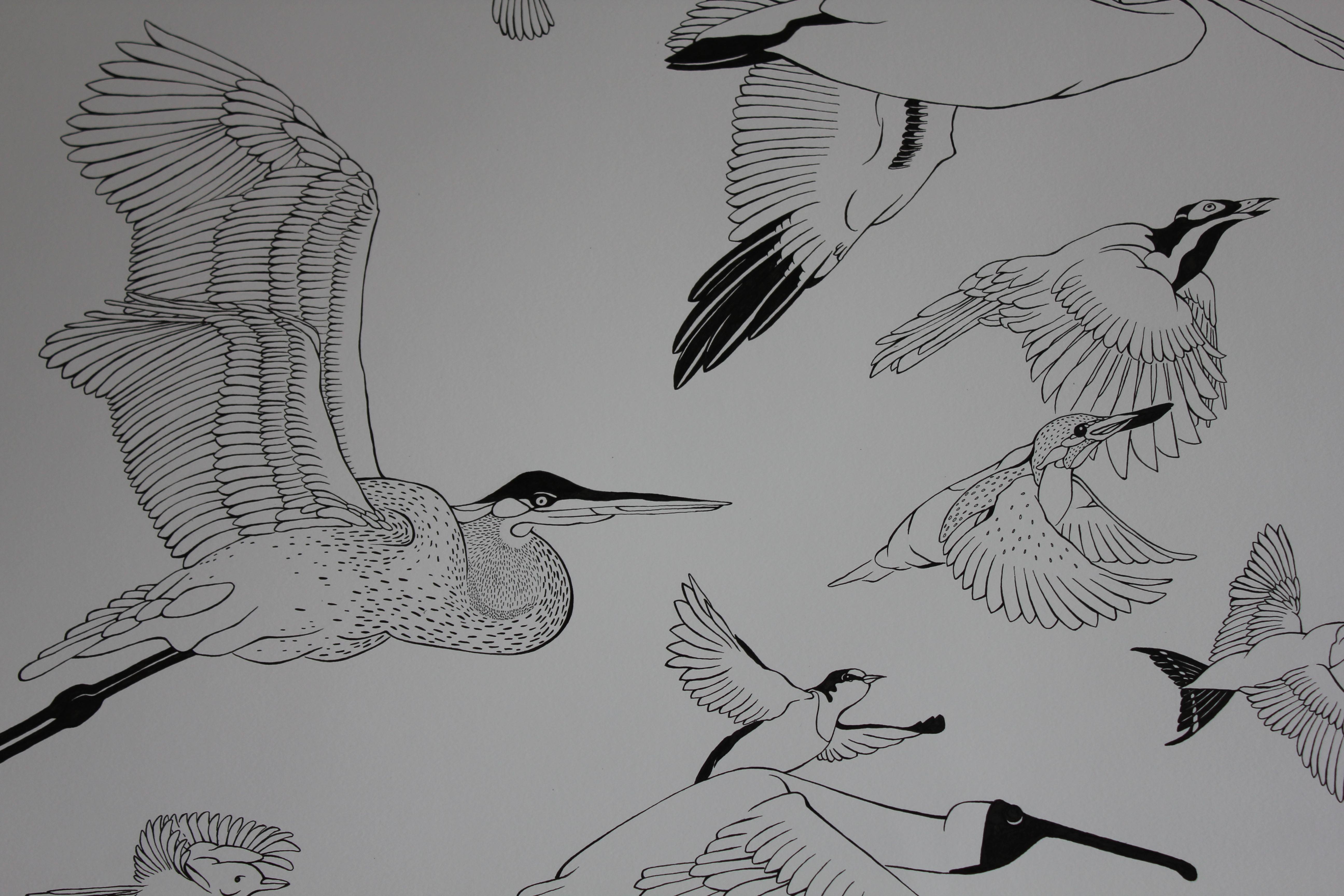 004_Udsnit-af-optegnede-fugle