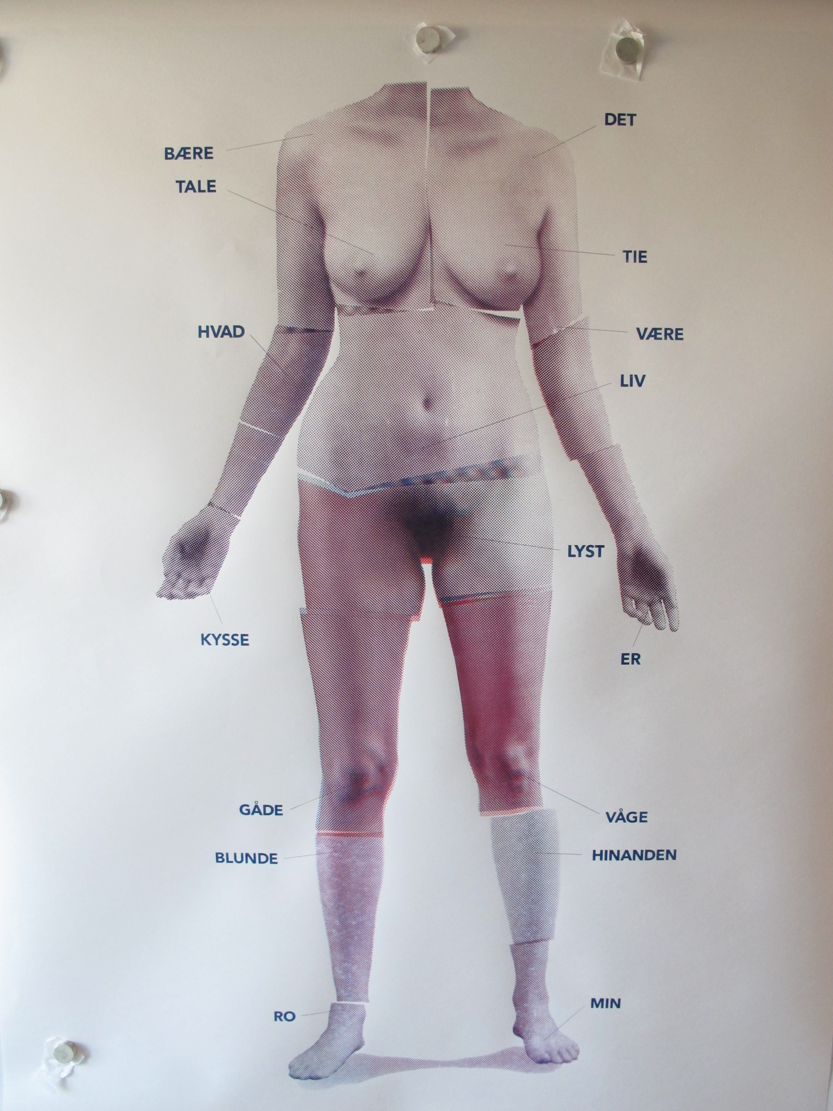 Nina Maria Kleivan: Falling awake/taletid